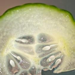 13_Green-cucumber