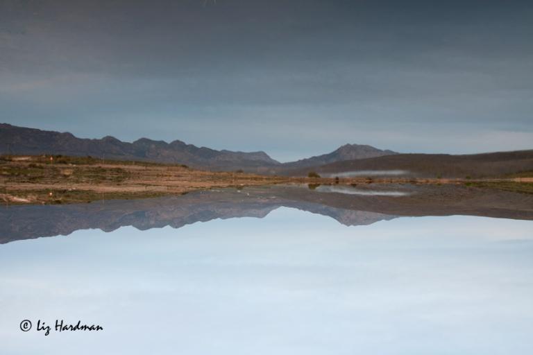 Lake-reflections-_-flipped-image