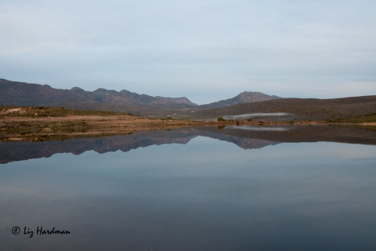 Lake-reflections-_original-orientation