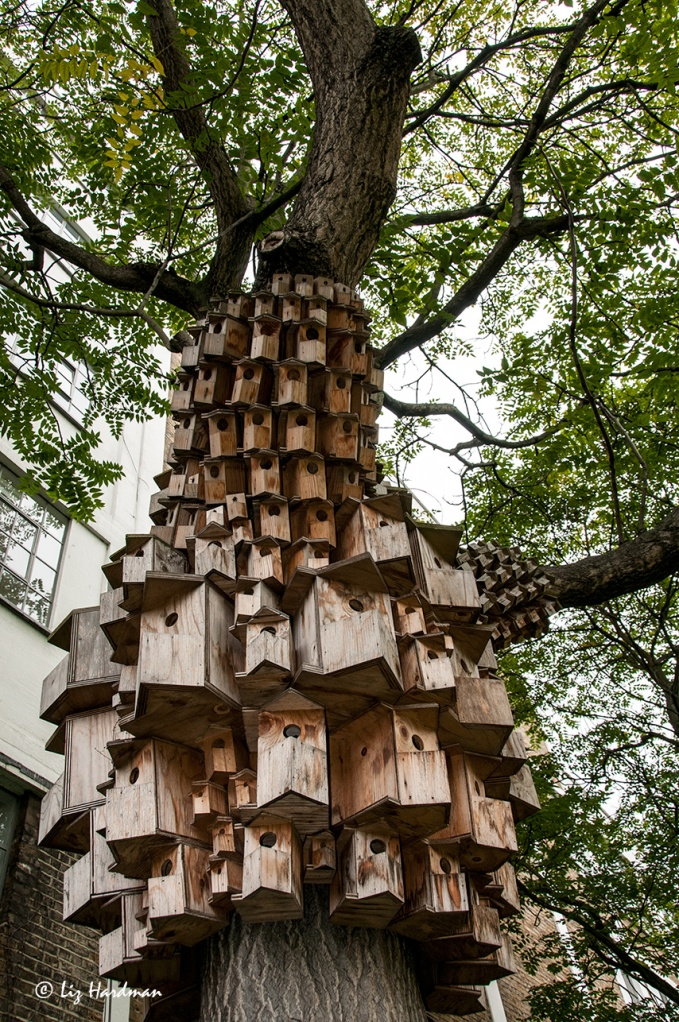 Condos for birds and bugs.