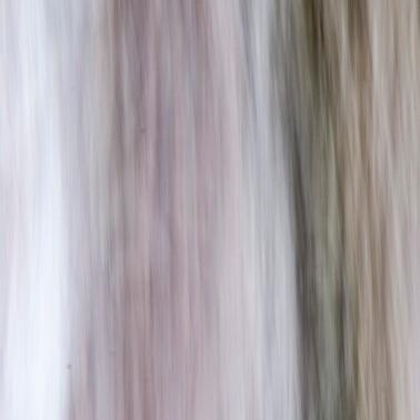 Random patterns_ bluegum_01