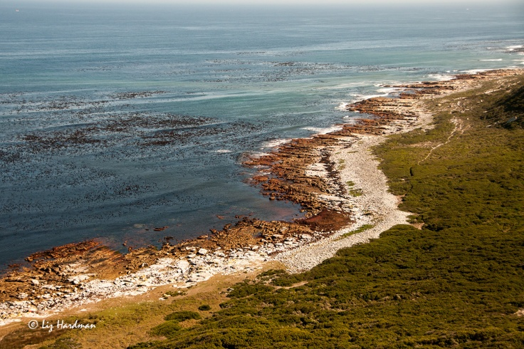The rocky shoreline on the Atlantic side