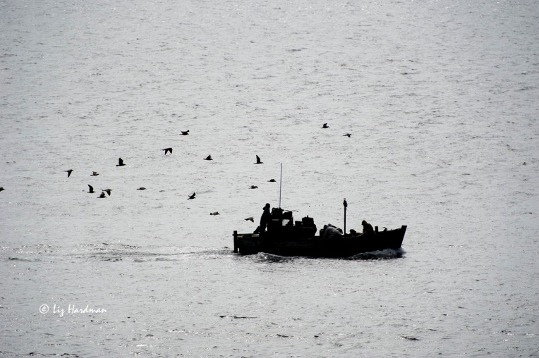 Fishing boat silhouette_01