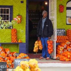 Citrusdal oranges
