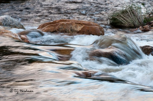 Water flowing downstream on the Stettynskloof River