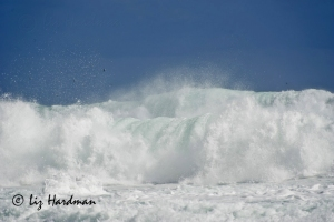 01_waves