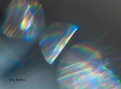 Sunbeams_02