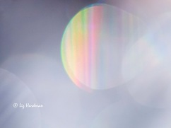 Sunbeams_03