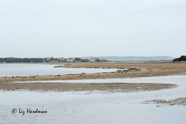 Rooisand nature reserve_02