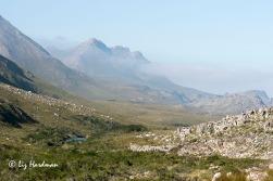 Looking towards Perdeberg Peak