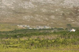 The eco-chalets nestle unobtrusively in the valley.