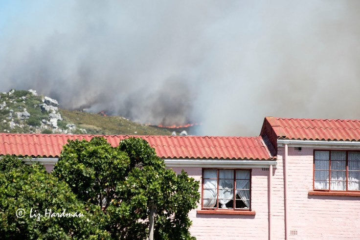 Flames pushing towards the houses.