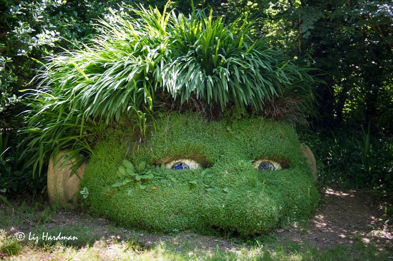 Giants_head_Heligan