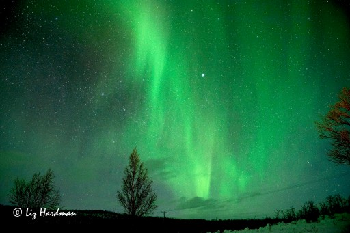 High in the Arctic Circle, the Northern Lights put on an entrancing light display.