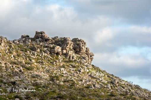 Table Mountain Sandstone