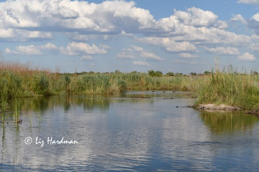 On the banks of the Kwando River
