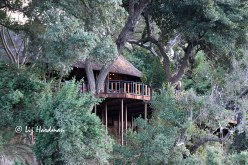 Namushasha riverlodge