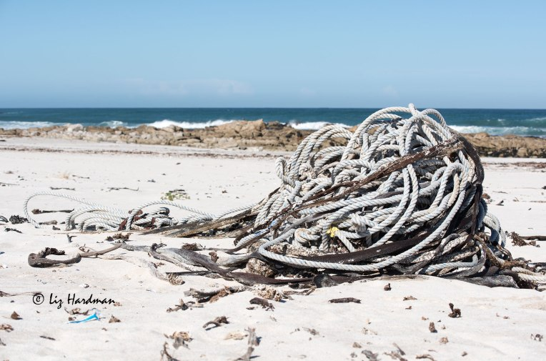 Mound of discarded fishing rope on beach
