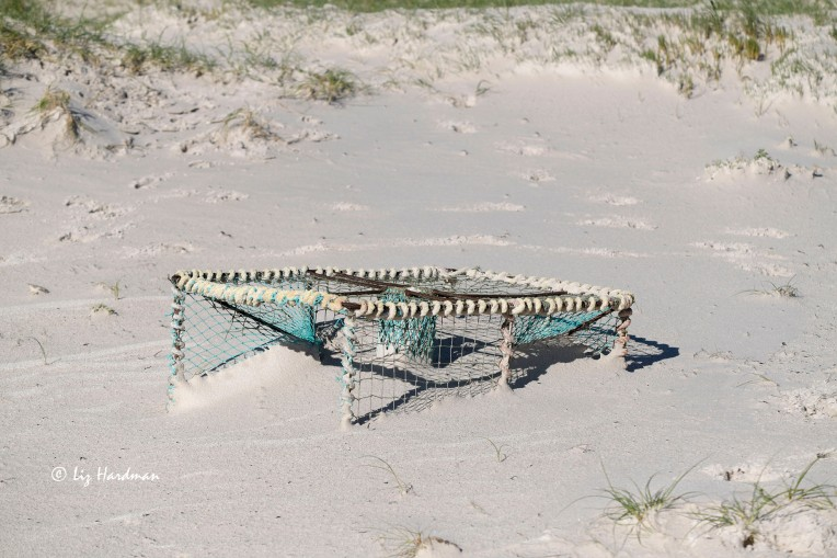 Discarded Cape lobster trap half buried in sand
