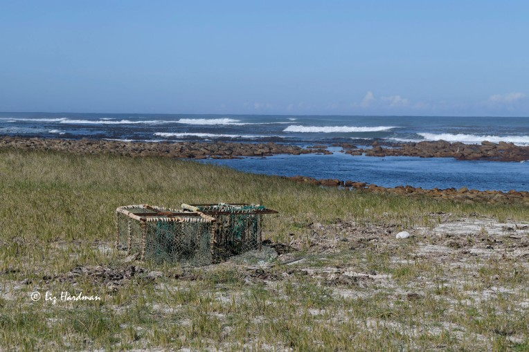 Discarded lobster trap washed up by sea